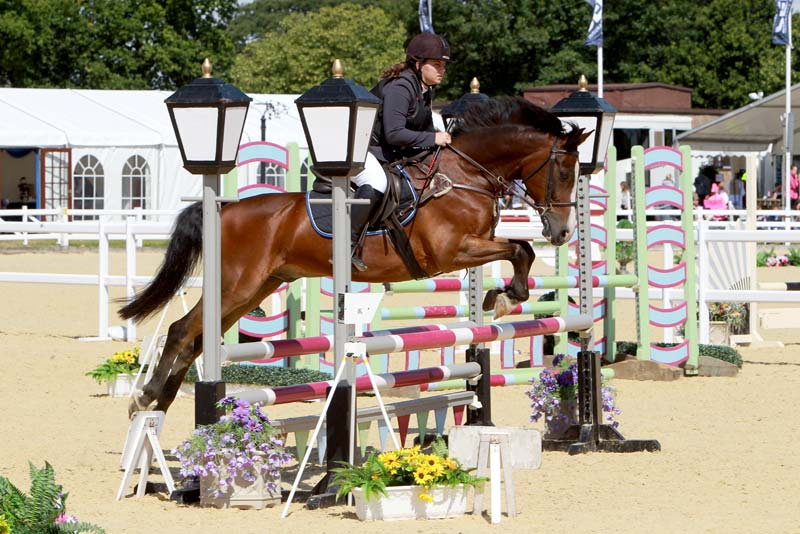 show jumping rules trailblazers